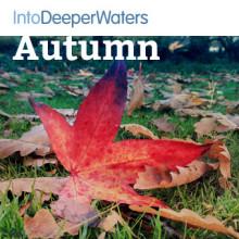 itdw-mp3-artwork-autumn