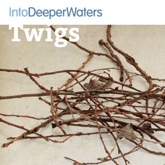 itdw-mp3-artwork-twigs