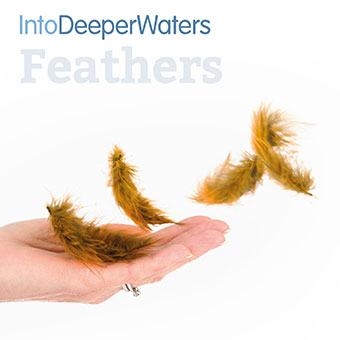 itdw-mp3-artwork-feathers