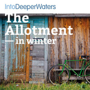 itdw-mp3-artwork-allotment