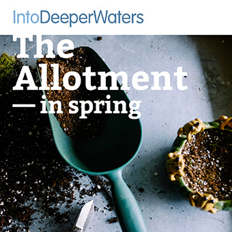 itdw-mp3-artwork-allotmentspring