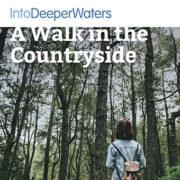 itdw-mp3-artwork-walkcountryside
