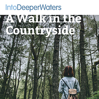 itdw-mp3-artwork-walkcountryside