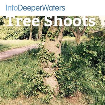 itdw-mp3-artwork72-treeshoots