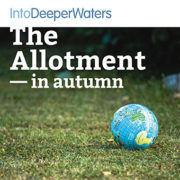 itdw-mp3-artwork72-allotmentautumn
